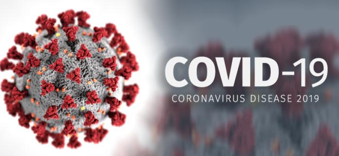 Emergenza Coronavirus: sanificare le strade senza uccidere l'Ambiente, sottolineano Ispra e Arpa Puglia