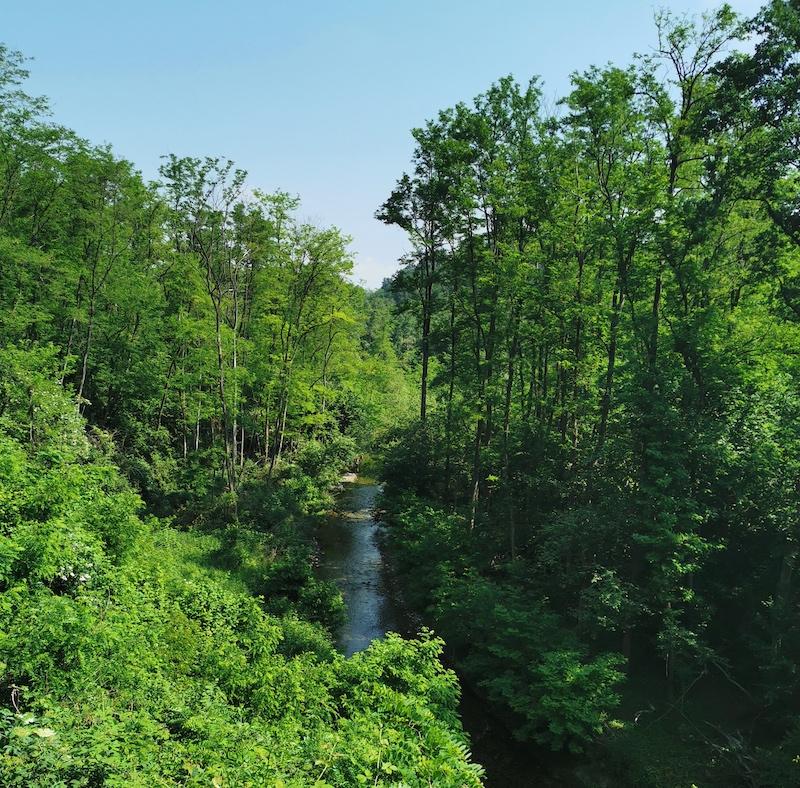 Selvaggia valle del torrente Lura