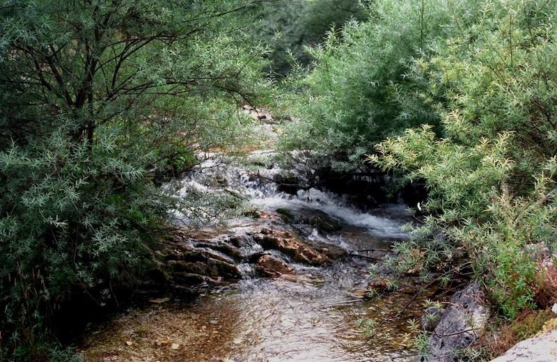 Il fiume ASO a FOCE (MONTEMONACO)