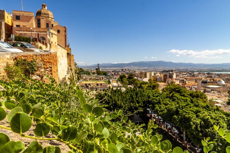 Cappero spontaneo nei bastioni cittadini Cagliari