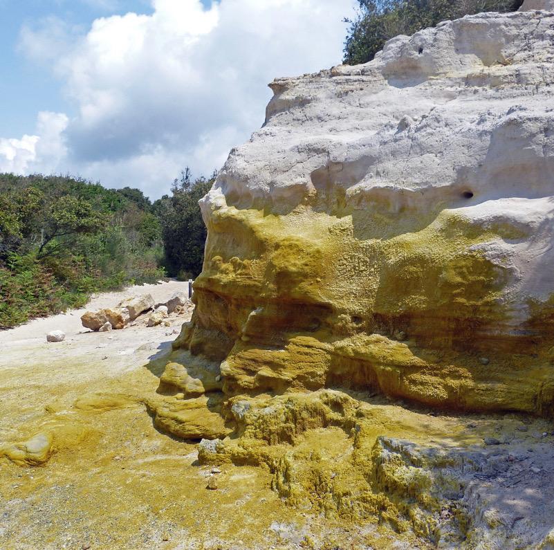 Arenaria tinteggiata dallo zolfo (Tor Caldara)