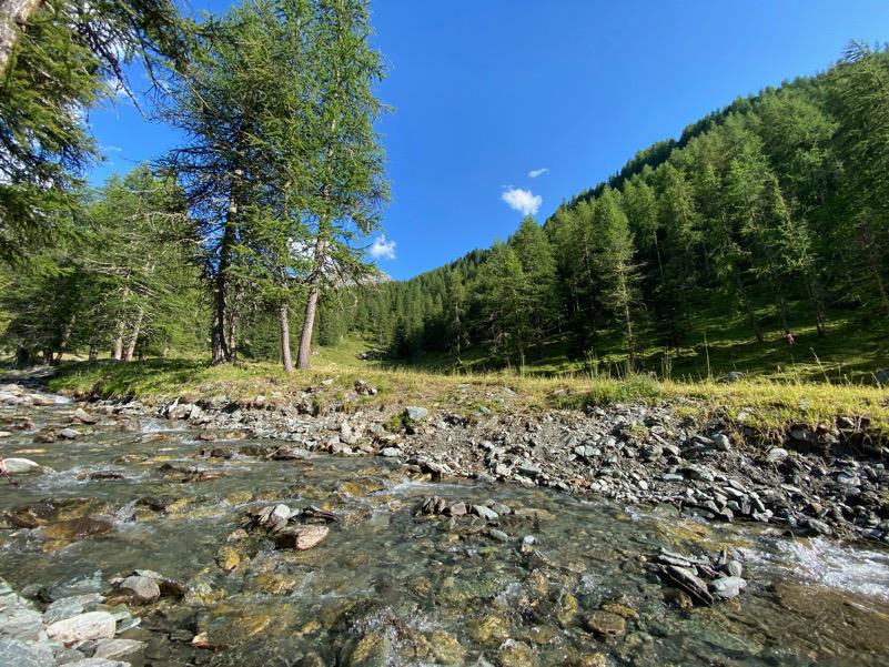 Torrente alpino in Val d'Ayas