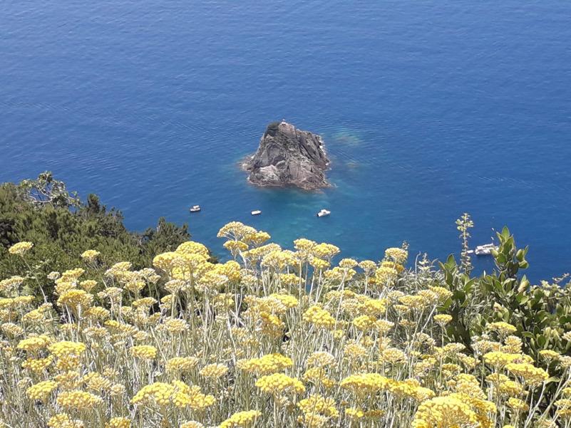 Una particolare quanto spettacolare primavera marina in lockdown vista dalle coste delle alture delle Cinque terre (SP)