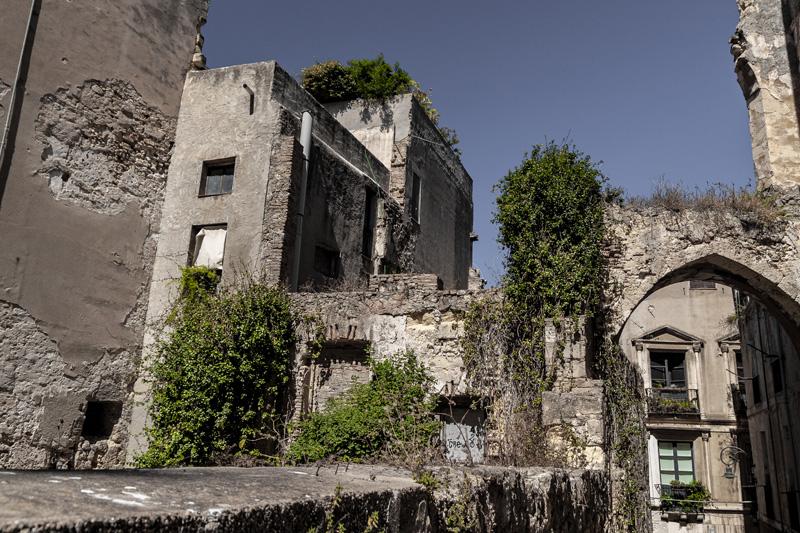 La natura riprende spazio - Cagliari