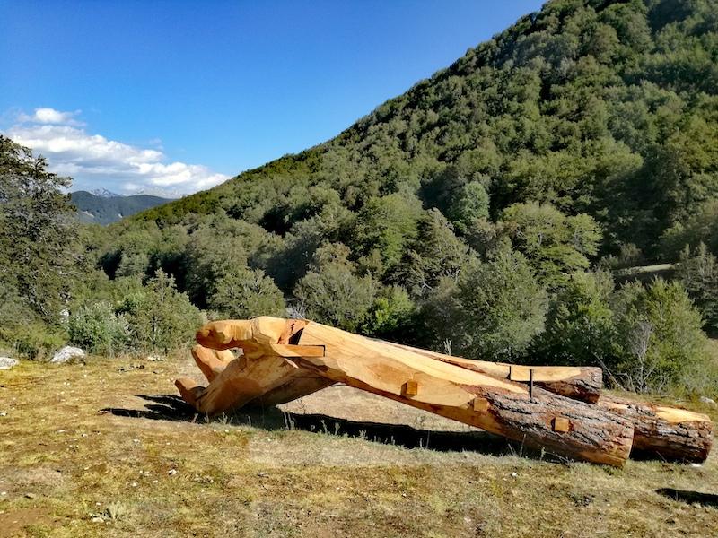 """""""Rispettami"""" disse Lei-Bosco della difesa, Parco Nazionale d'Abruzzo,Lazio e Molise"""