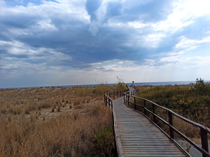 Curva sulla duna di sabbia (M. di Ascea)