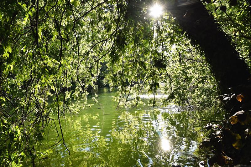 lago di giardini margherita a Bologna