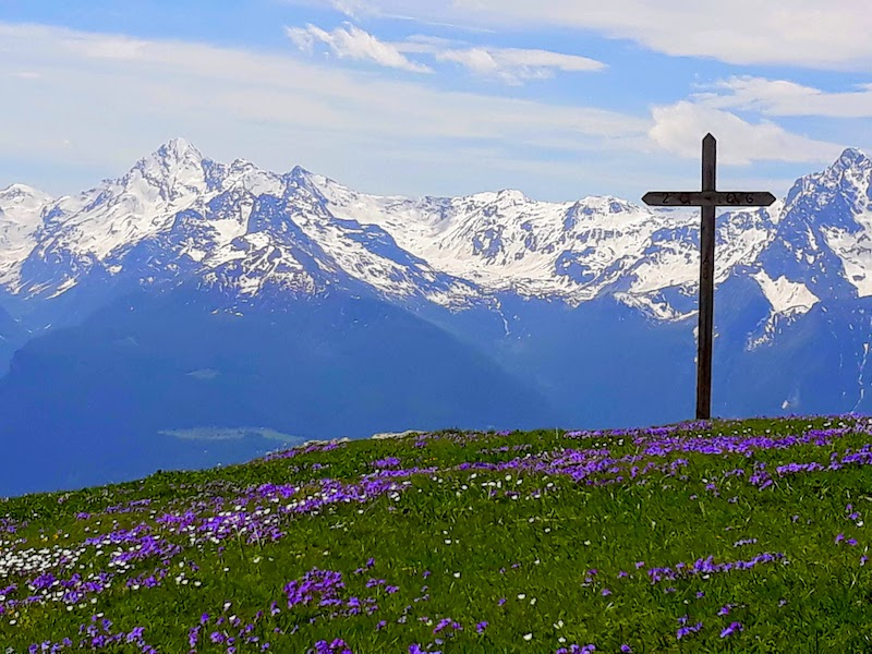 Fioritura primaverile verso il Santuario della Madonna delle Nevi Cuney - Saint Barthelemy