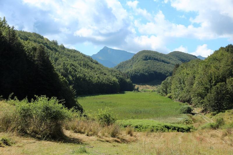 Lago Pratignano, oasi di biodiversità sull'Appennino