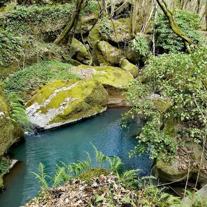 Sleeping Beauty- Riserva Naturale del Monte Rufeno