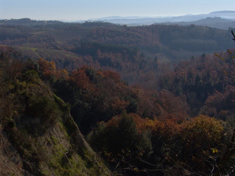 Colline in Val d'Orlo-Corazzano (PI)