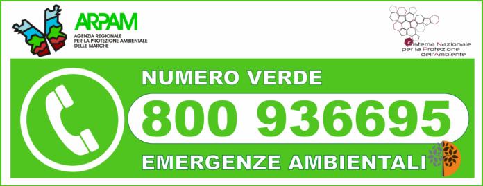 ARPAM_numero_verde